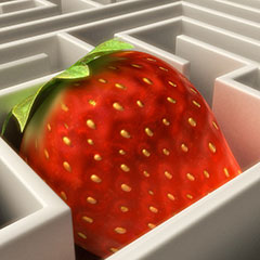 Strawberry Maze